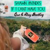 Shawn Mendes If I Cant Have You Que Rkay Bootleg Gbx Mp3
