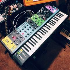 Moog Matriarch - First Test 01