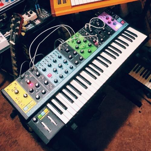 Moog Matriarch - First Test 03