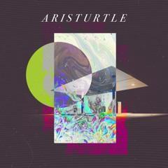 ARISTURTLE - P E N T H O U S E