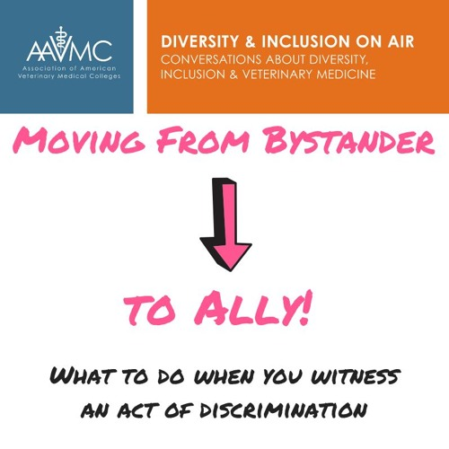 56- From Bystander To Ally
