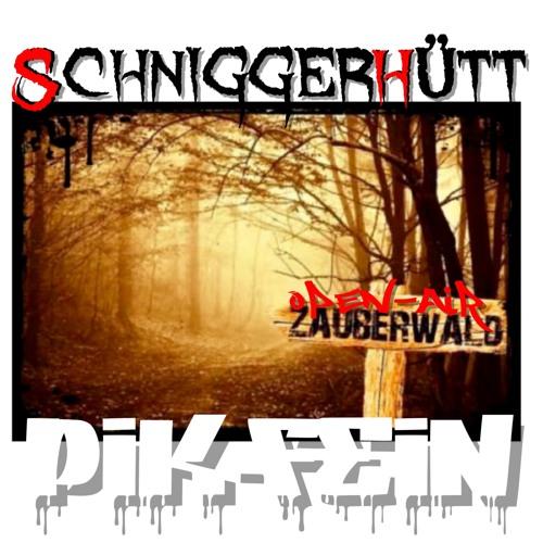 PIK-FEIN @ ZAUBERWALD OPEN-AIR   SCHNIGGERHÜTT - GROßKOTZENBURG   24.08.2019