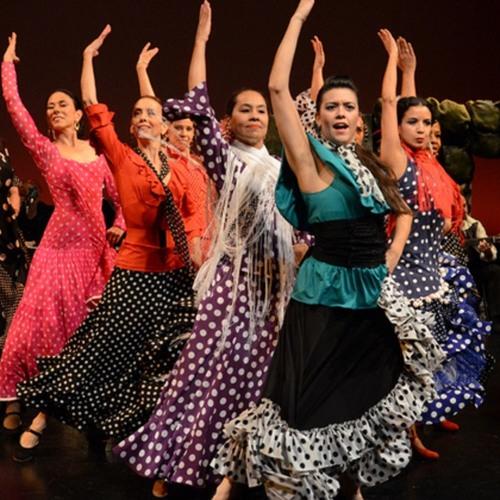 Eva Lucena from Alborada Spanish Dance Theatre - STNJ Episode 338
