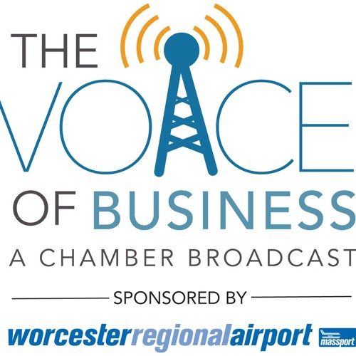 #02 Voice of Business: WPS Night Life, Express Blogging Services, JobsinMA.com