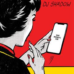 DJ Shadow - Rosie