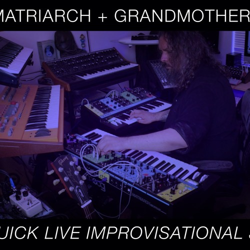 Moog Matriarch + Grandmother + DFAM