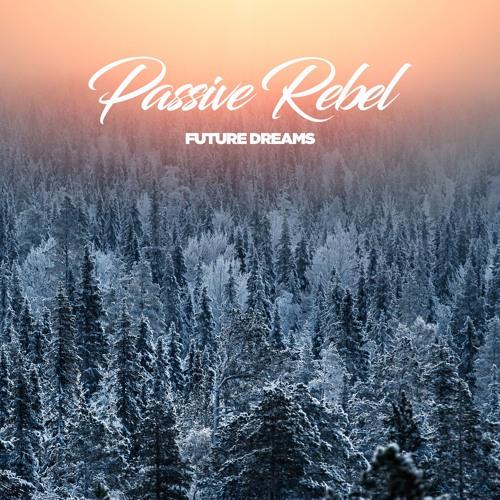 Passive Rebel - Reflectance