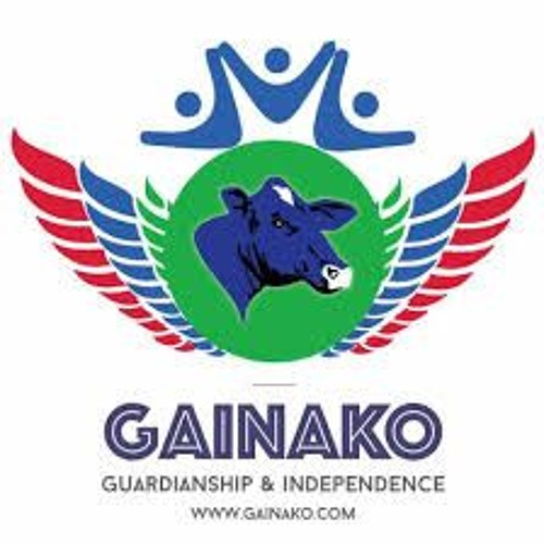 Gainako Editor On The Janneh Commission