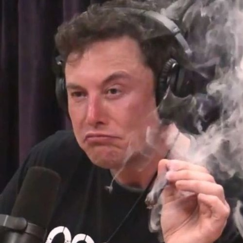 DICE - Elon Musk