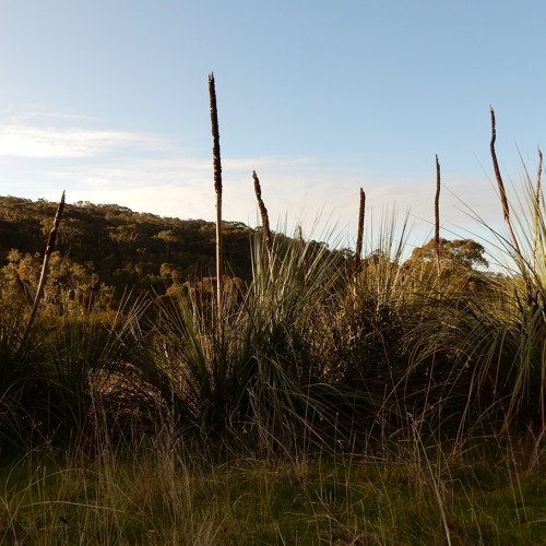 Fleurieu Sound Map recordings (in progress..more to come)