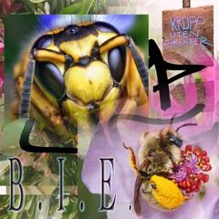 Siri - B.I.E. (DJ Ibon remix)