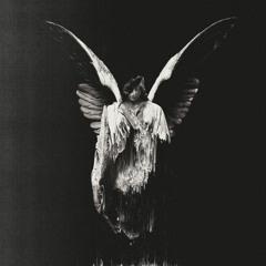 The Devil Killed The Angel On My Shoulder