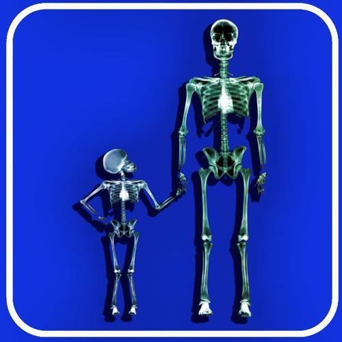 Ep 297 - The Skeleton Store
