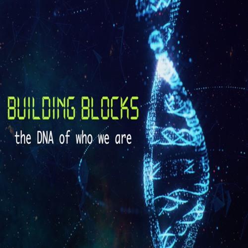 Building Blocks//Discover Purpose