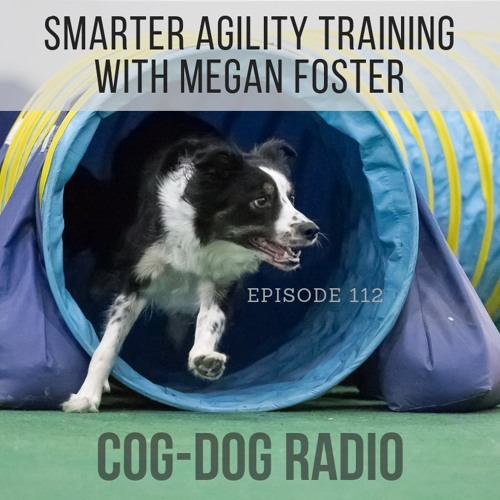 Smarter Agility Training with Megan Foster