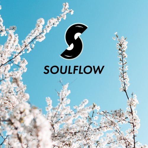 30 Min Roller Mix for @Soulflowdnb