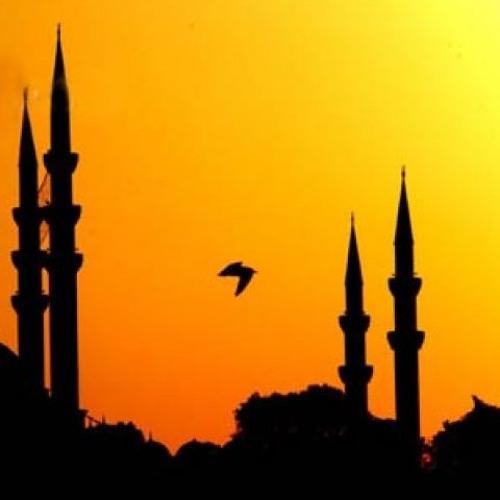 في بيوت اذن الله أن ترفع ويذكر فيها اسمه - القارئ عبدالرحمن مسعد