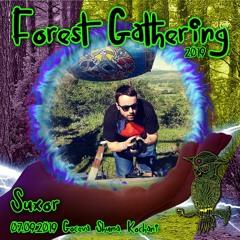 Dj Suxor - Forest Gathering 2019 (Old School Goa Mix)