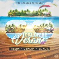 Pilson Ft. J Balvin & El Alfa - Calor De Verano (Mike Gonzo & Antonio Colaña 2019 Mashup)