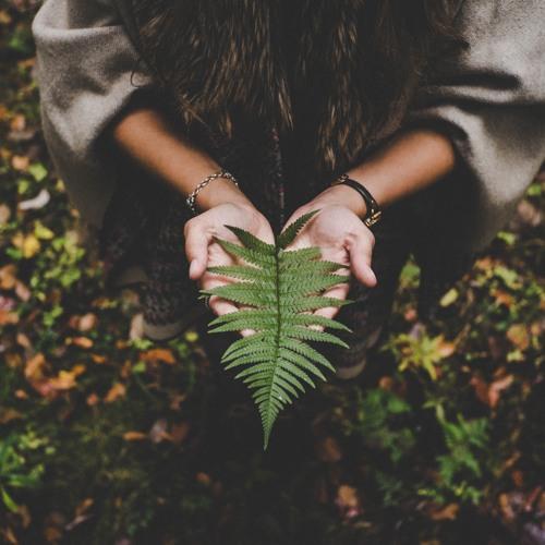 Meditation För Oroliga Själar