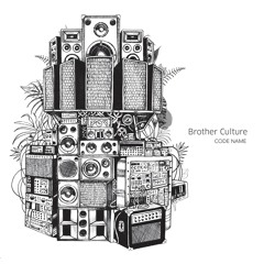 Jah Ina Mi Heart - Brother Culture & Addis Records (Evidence Music)