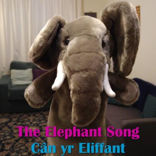The Elephant Song / Cân yr Eliffant