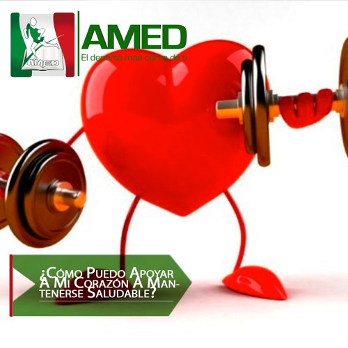 Podcast 363 AMED - ¿Cómo Puedo Apoyar A Mi Corazón A Mantenerse Saludable?