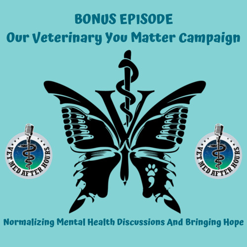 """Veterinary You Matter Campaign - Normalizing discussing struggles and asking for help"""