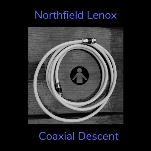 Coaxial Descent