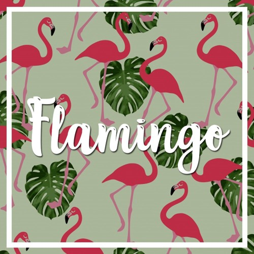 [FREE] Flamingo