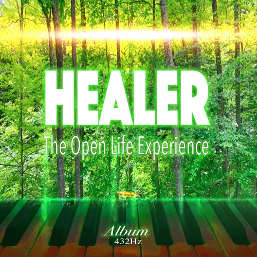 Healer (The Open Life Experience)