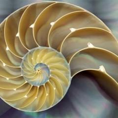 Divine Consciousness 20min Guided Meditation