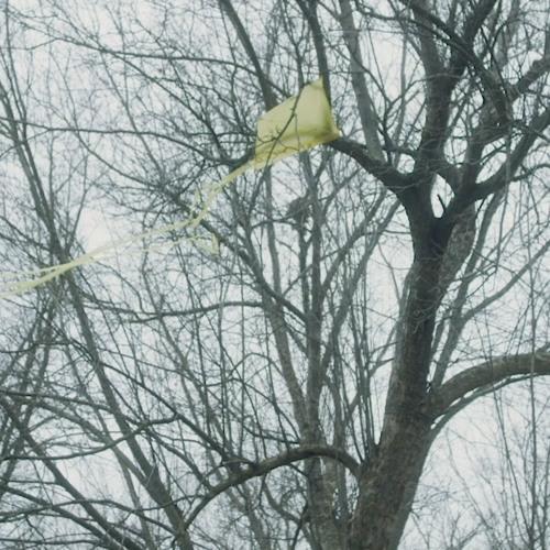 Yellow Kite, 2019