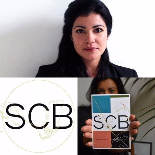 Daniela Arriado/ Screen City Biennial