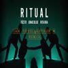 Tiësto, Jonas Blue & Rita Ora - Ritual (Ian Tosel & Arthur M Remix) [FREE DOWNLOAD]
