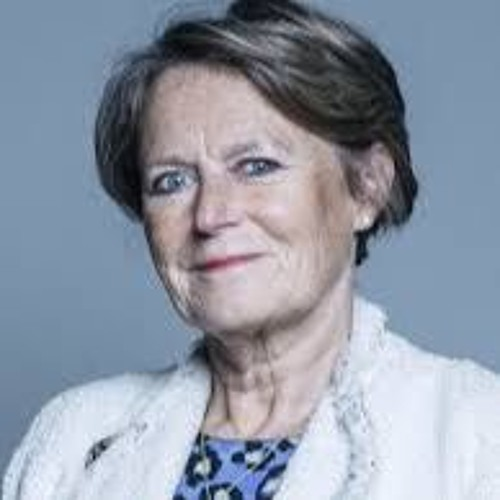 Baroness Anne Jenkin, Abuse of MPs & selection of candidates