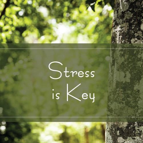 Stress is Key