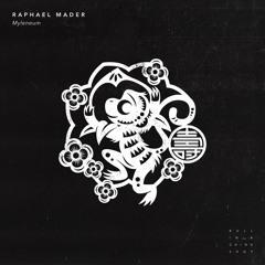 Raphael Mader - Harmonic Harm