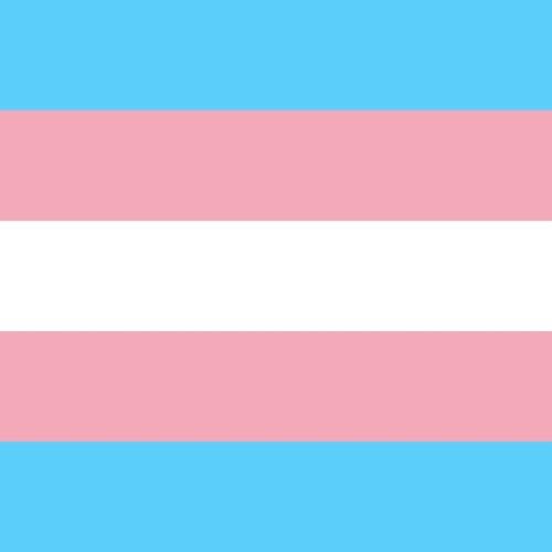 Episode 17: Søvn, kjønn og transpersoner