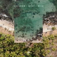 Hillsdom - What I Need