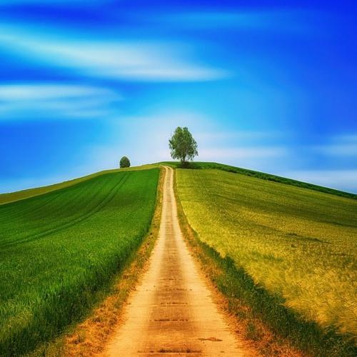 A Man to Follow Part 11 - Sermon on a Hill