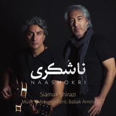 Siamak Shirazi & Babak Amini - Naashokri