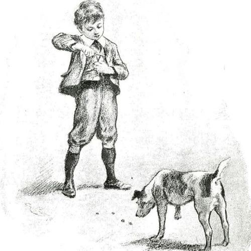 الكنز والكلب الوفي - Treasure and the loyal dog