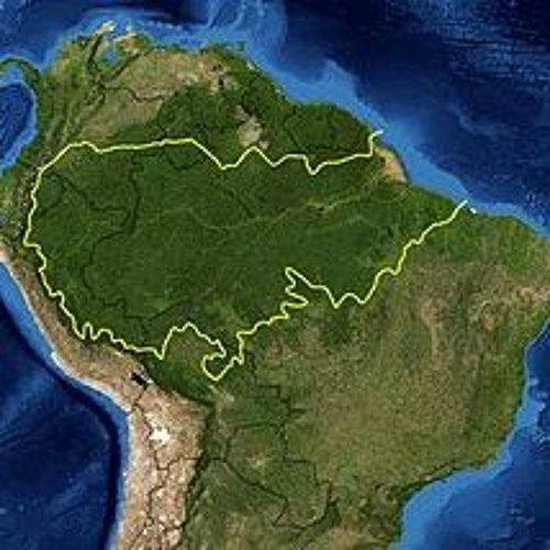 Amazzonia e deforestazione
