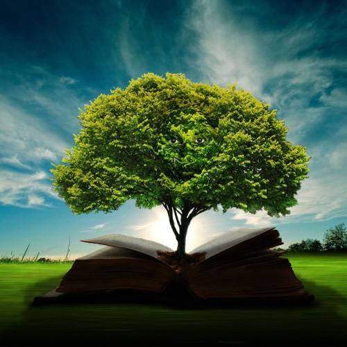 Wisdom Gives Life & Strength PT 3