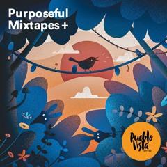 Lo-Fi Hip Hop ❄️🌲 ☀️🍁 Mixtapes