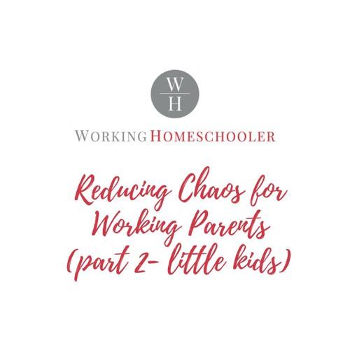 How Homeschooling Reduces Chaos Part 2 - Littles
