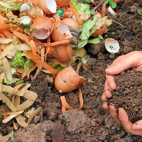 A new approach to composting -- Oct. 3, 2019
