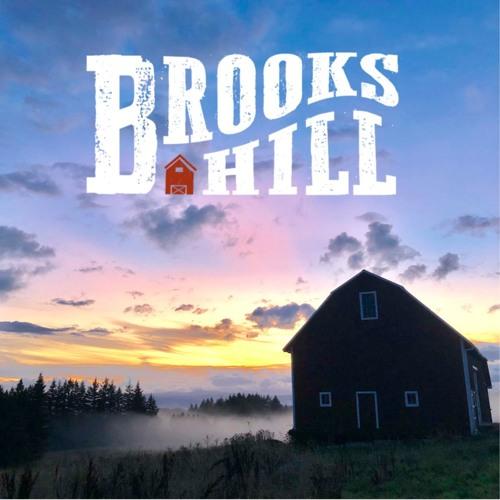Brooks Hill Album Preview