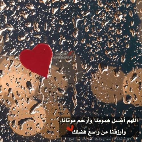 هو الحب / عبدالرحمن الخضر